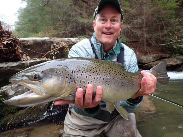 Blackhawk fly fishing clarkesville ga for Trout fishing in ga