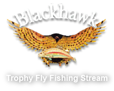The Blackhawk Fly Fishing logo